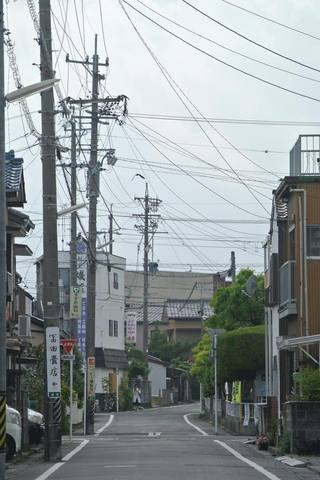 shimada069s.jpg