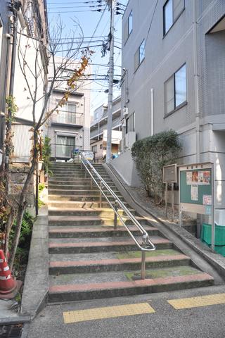 tokyo3636s.jpg