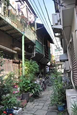 tokyo3665s.jpg