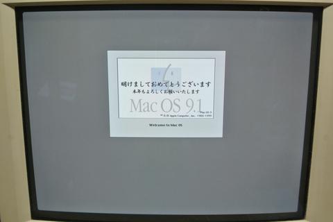DSC_7900s.jpg