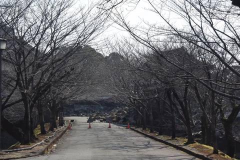 kumamoto133s.jpg