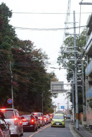 kyoto338s.jpg